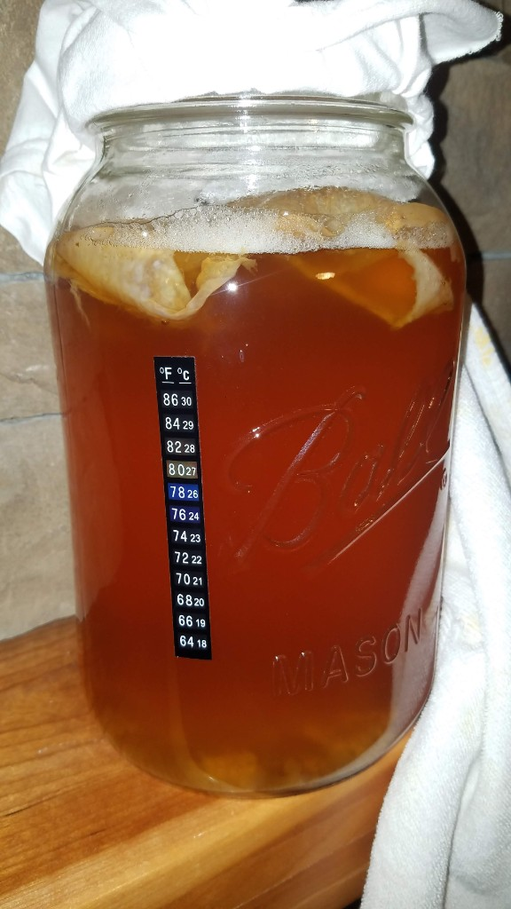 13-kombucha-temperature-strip
