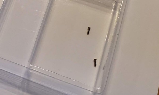 07-iphone-screws