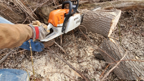 Stihl-Chainsaw-in-Use