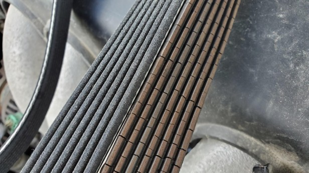 08-compare-old-new-serpentine-belt