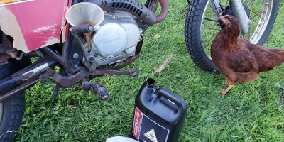 filling fresh GN Honda motor oil 10w-40