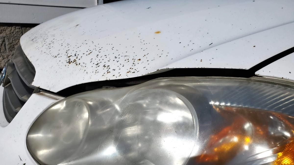 01-Toyota-Corolla-hood-wont-latch
