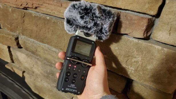 19-Zoom-H5-Recording-Deadcat